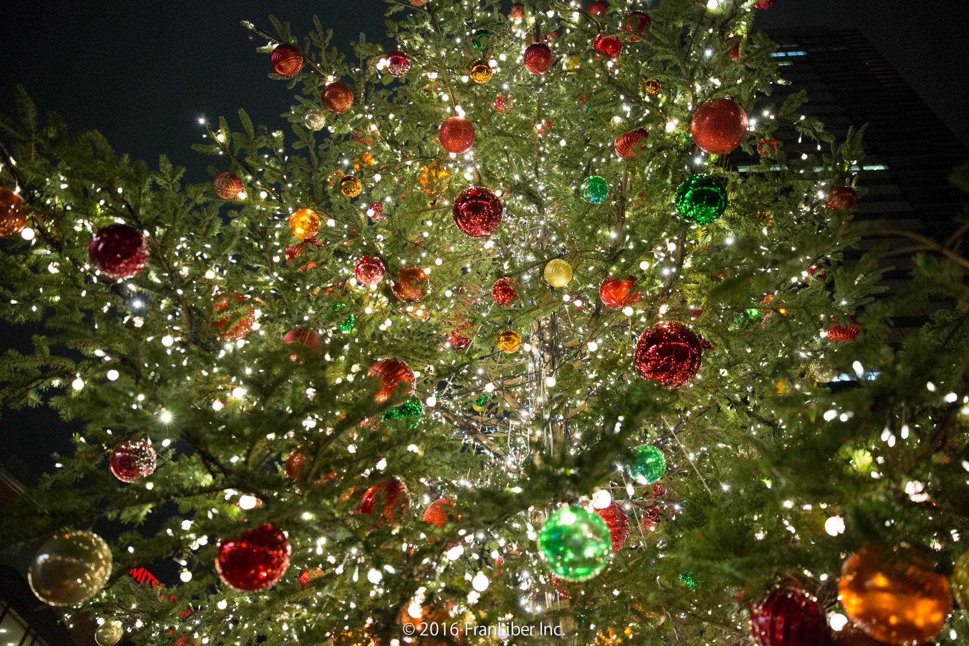 クリスマスツリー内部