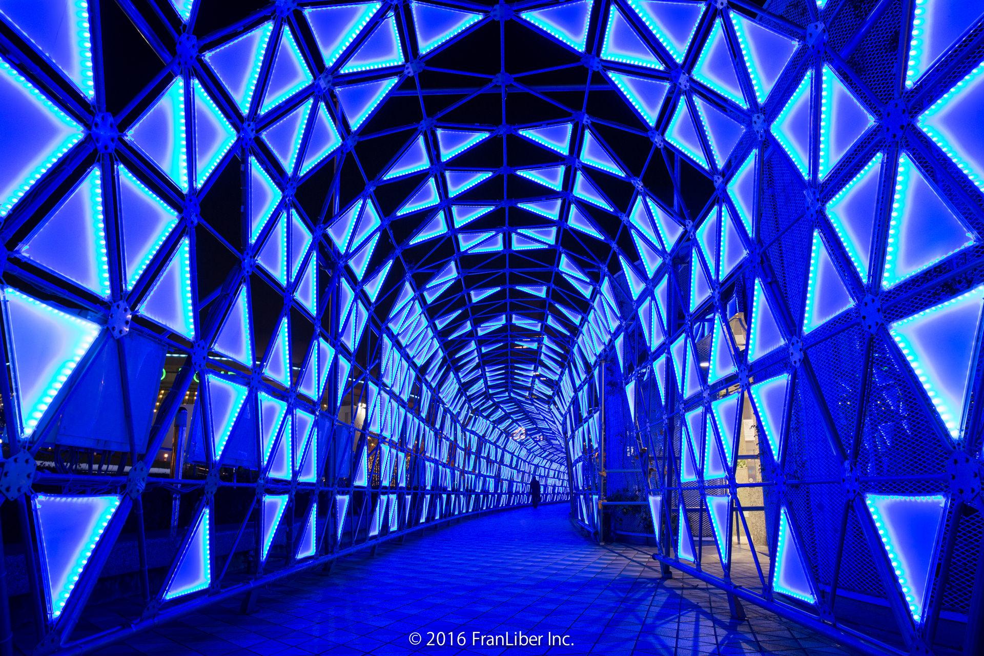 光の大トンネルを中から撮影した写真