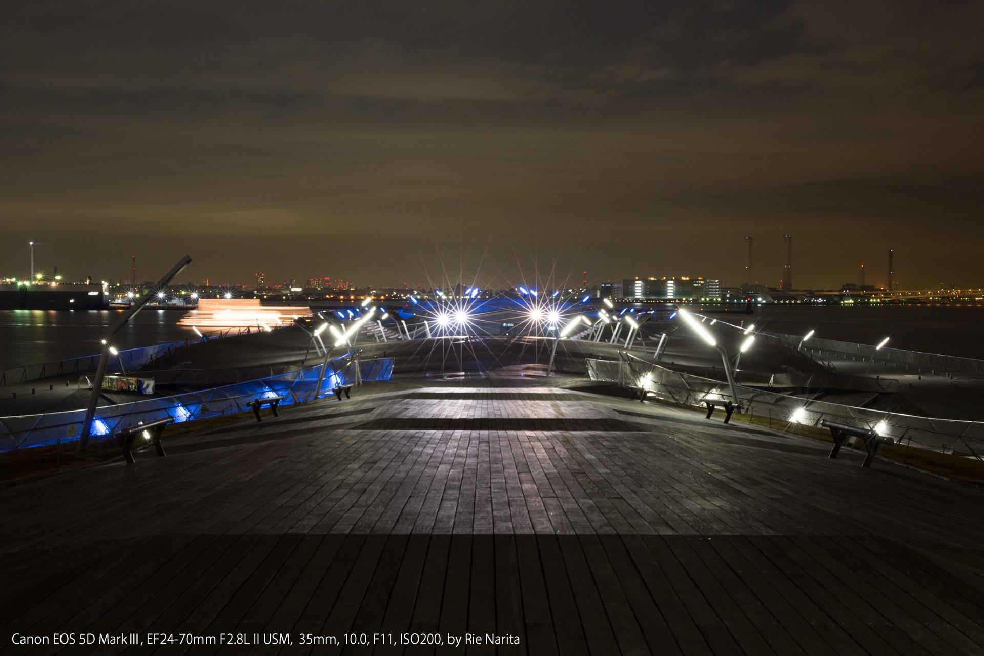 横浜大さん橋の「くじらのせなか」