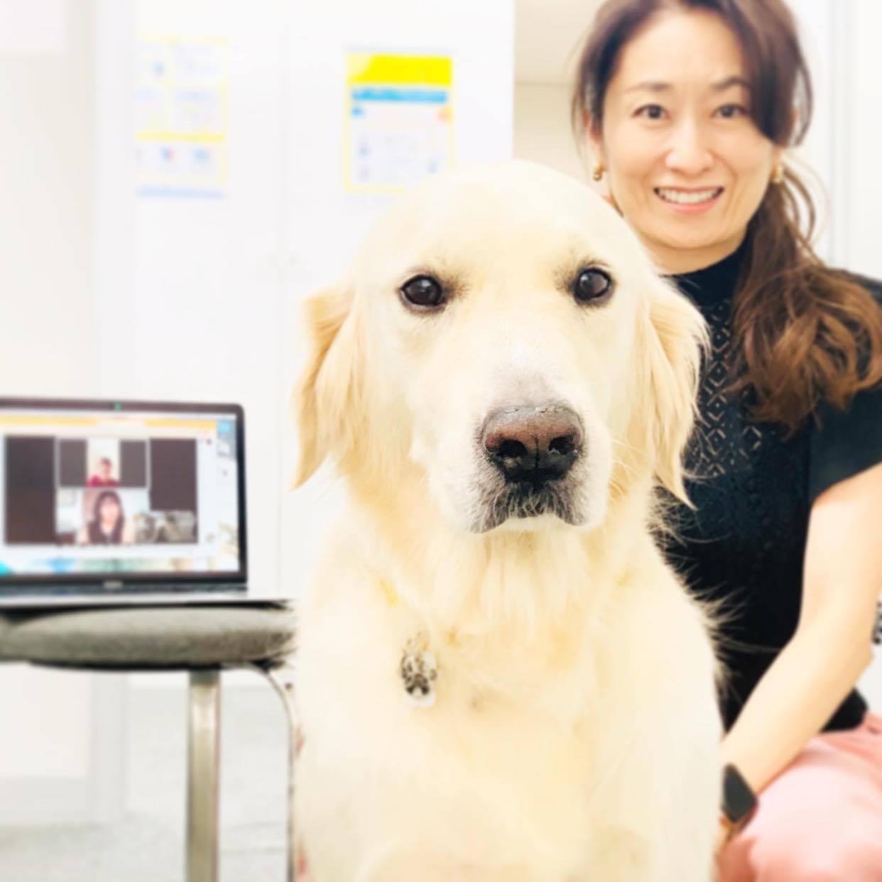 「日本の動物福祉を世界トップレベルに」 アニマル・ドネーションの挑戦