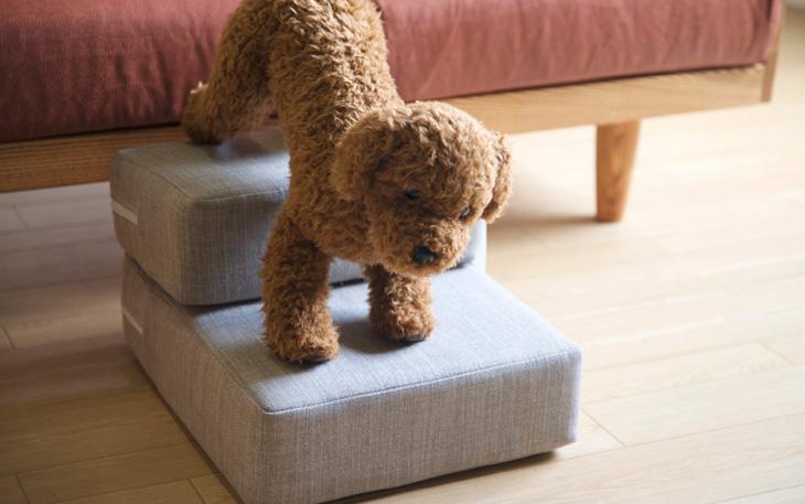 【タイプ別】犬用の階段