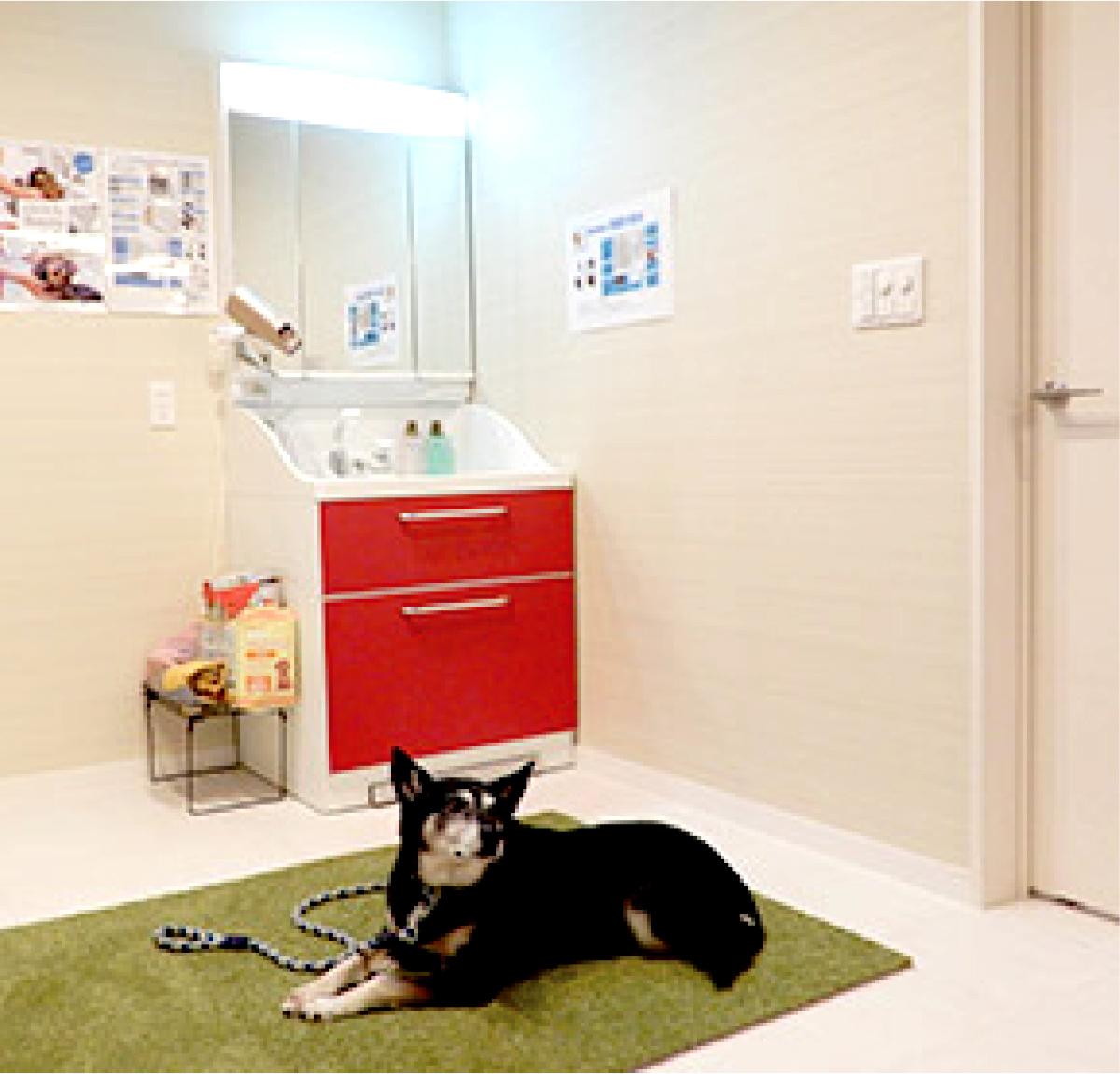 犬専用の洗面化粧台