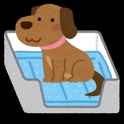 犬と犬用トイレのイラスト
