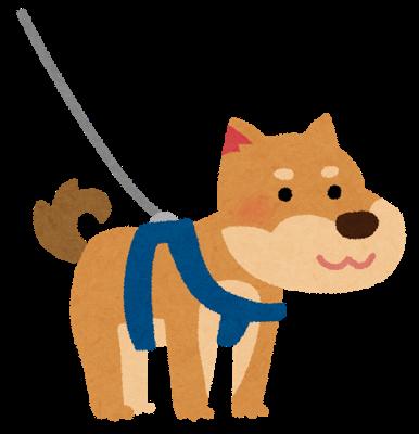 リードとハーネスを付けた犬のイラスト