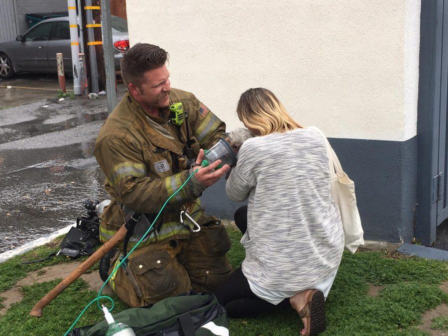 消防士が犬を救助する様子