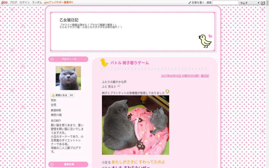 ブリティッシュショートヘアのブログ「ぶりお!ぶりお!」
