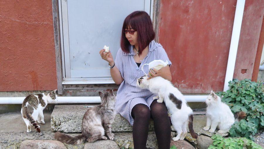 猫にサンドイッチをねだられるクレス聖美先生