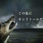 犬がキシリトールを食べると危険? 中毒症状や対処法を解説