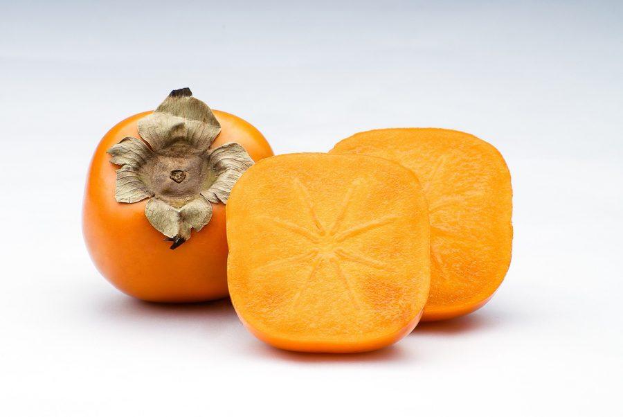 犬が食べても良い秋の食材である柿
