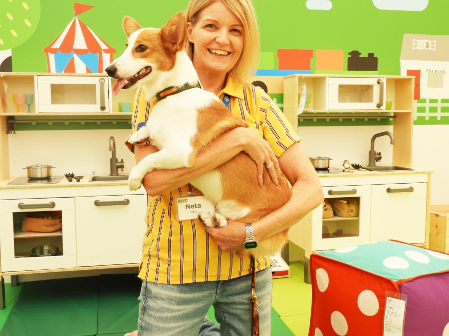 IKEA ルールヴィグ スタッフ 犬