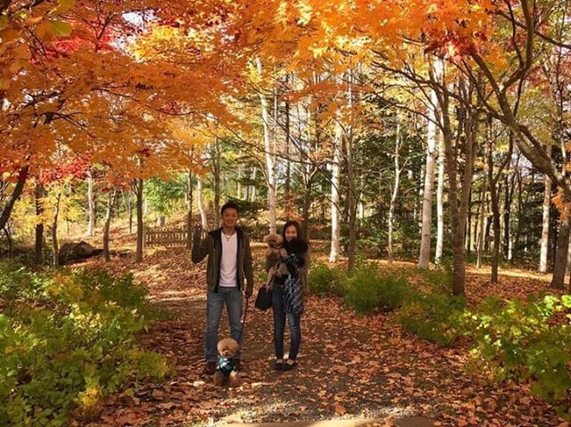 犬と秋に行きたい紅葉が楽しめるお出かけスポット北海道南区にある滝野すずらん丘陵公園