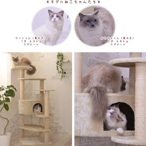 大型猫キャットタワー