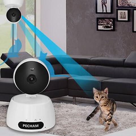 猫のお留守番ネットワークカメラ