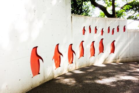 ウォンバット 動物園