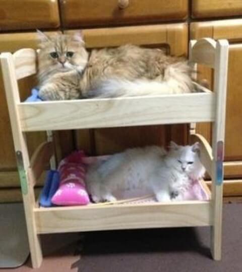 IKEA(イケア)人形用ベッド