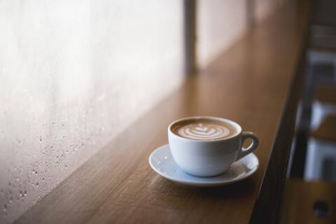 ドッグカフェ11