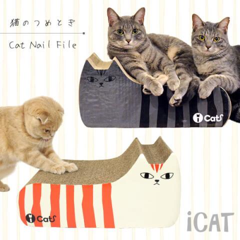 cat-08