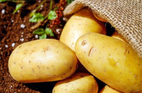 袋から出ているジャガイモ