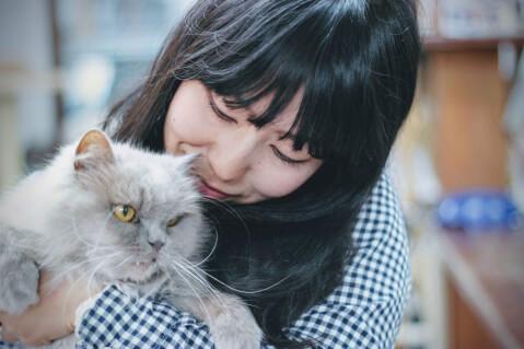 猫 人間 話しかける