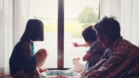 猫と家族のイメージ