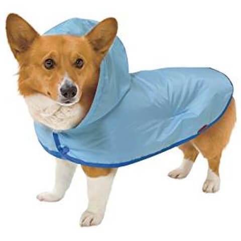 dogclothe