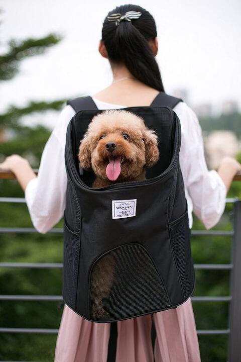 dogbag-02