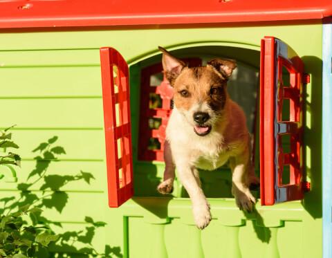 犬 小屋 diy 簡単 おしゃれ 作り方 屋根 大型犬