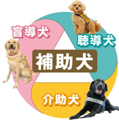 補助犬テキスト