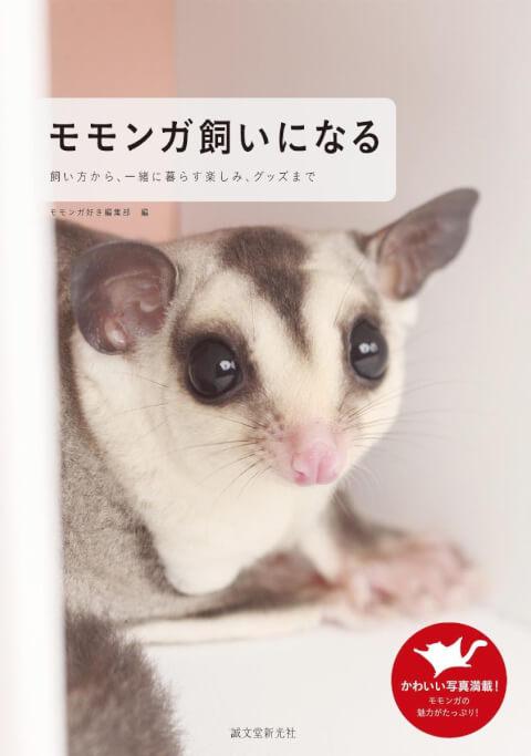 フクロモモンガの本