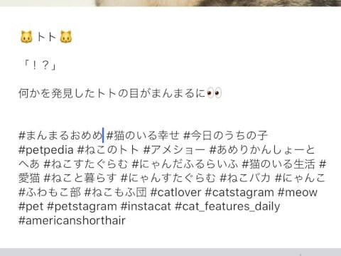 Instagram インスタ ハッシュタグ