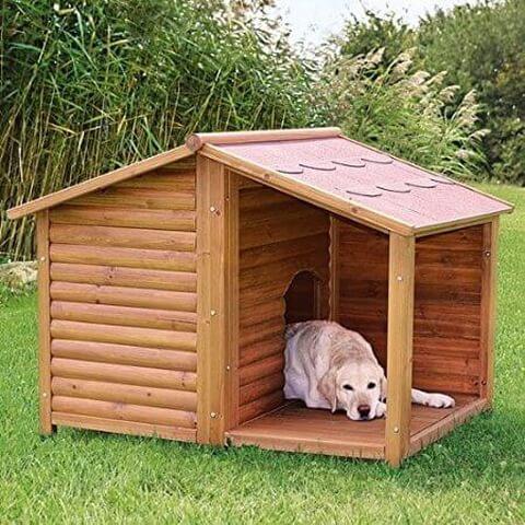 犬小屋 デザイン性