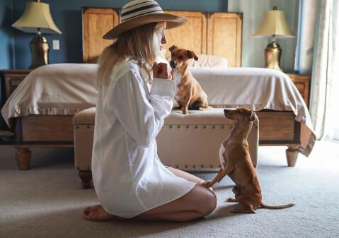 出かける女性と犬