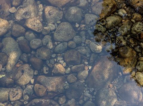 池のイメージ
