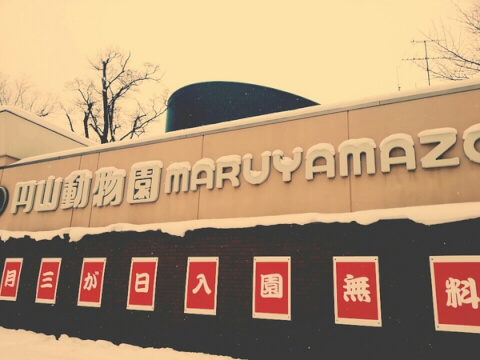 maruyamazoo_38