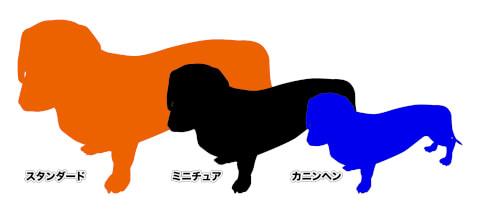 ミニチュアダックスフンド 性格 体重 スムース 寿命 種類 毛