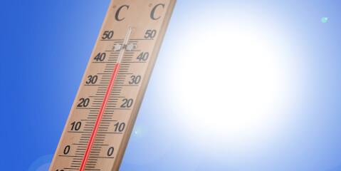温度計と日光