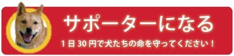 ピースワンコジャパン