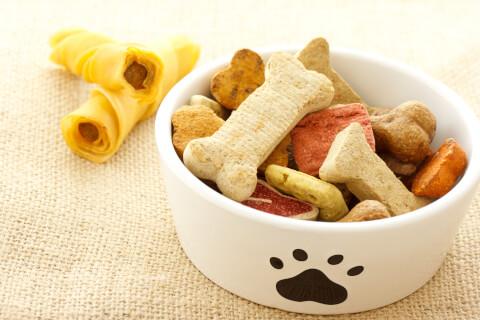 ペット フード 通販 保存 おすすめ 健康 犬 猫