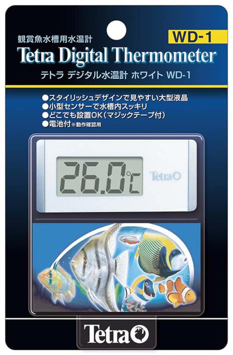 レッドビーシュリンプ 水温計