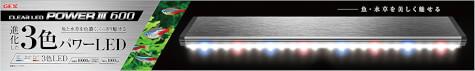 レッドビーシュリンプ ライト