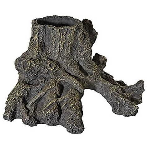 流木 切り株