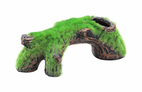 流木 商品4