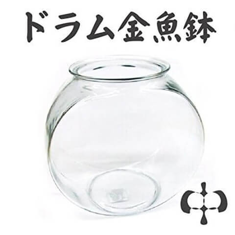 水槽紹介 金魚鉢