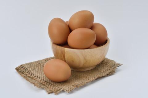 烏骨鶏 卵
