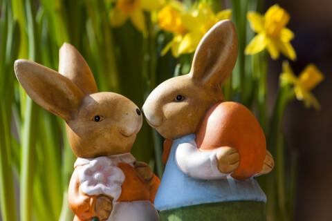 カップルのウサギ人形