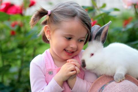 ウサギと少女3