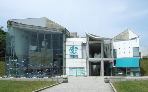 Saikai Pearlsea Umikirara