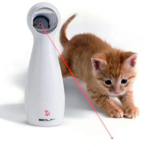 FroliCat Laser