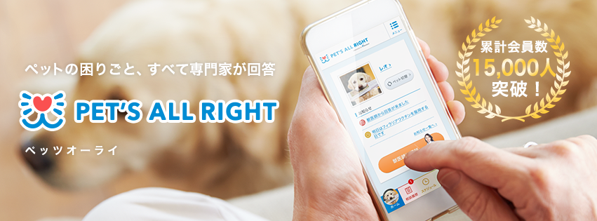 PET'S ALL RIGHT ペット WEB 動物病院