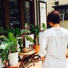 hair design   Kahuna所属のヤマネシモン